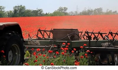 Tractor plowing poppy field