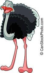 Happy Cartoon Ostrich