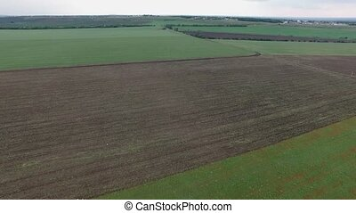 Tractor on a poppy field - Aerial. Tractor plowing the field...