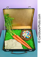 What the Easter Bunny Packs - Fun concept image for what the...