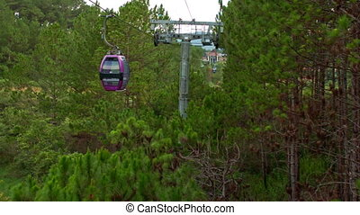 Rope-way with Moving Cars through Tropical Pine Forest - DA...
