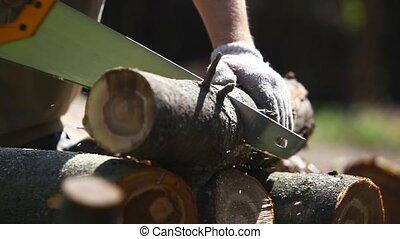 Cutting log - Man cutting log.