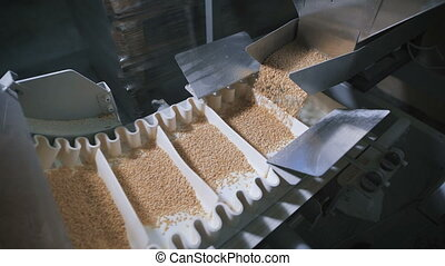 Modern food industry. Automatic machine for packing cereals....