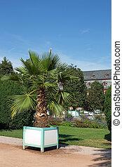 Orangerie in Darmstadt (Hesse, Germ - Orangerie and...