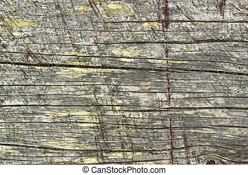 Old weathered wood texture natural abstract.