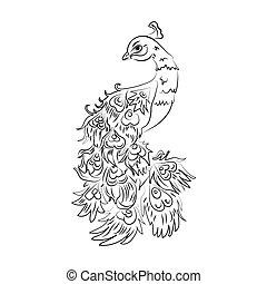 Vector peacock