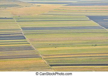 Stubble Fields in Dobrogea, Romania