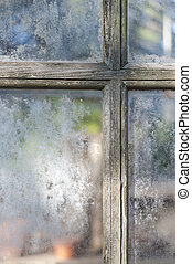 Old window panes greenhouse - Weathered muntins and window...