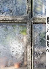 volets, fenêtre, vieux, serre