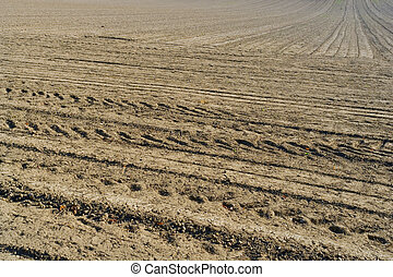 Plowed field background