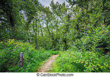 The River Trail at Great Falls, at Chesapeake and Ohio Canal...