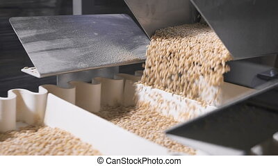 barley grits crumbles into equal shares in a modern...