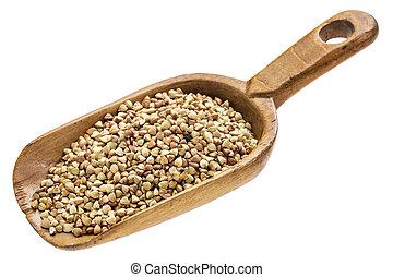 scoop of buckwheat grain