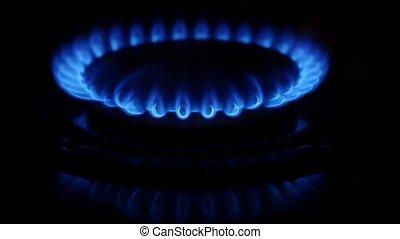 Gas burner. Close up - Gas burner, fire, blue flame, cooking...