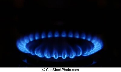 Gas cooker. Close up - Gas cooker, fire, blue flame, cooking...