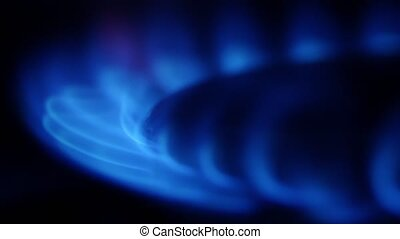 Flame of a gas burner. Close up - Flame of a gas burner,...