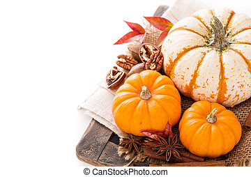Variety of decorative pumpkins on white background - Variety...
