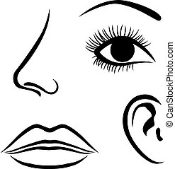 Eyes, nose, lips and ear icon - Vector illustration of Eyes,...