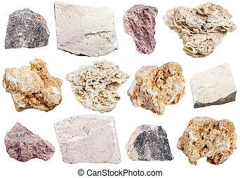 pedra calcária, espécimes, cobrança, rocha