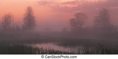 pink sunset under lake with misty fog