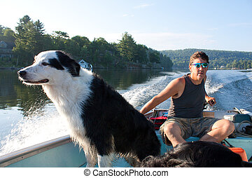 Dog loves fishing boat - Man steers fishing boat through the...