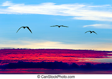 Birds Flying Silhouettes - Birds flying silhouettes is three...