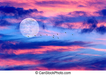Moon Clouds Birds - Moon clouds birds is a vibrant colorful...