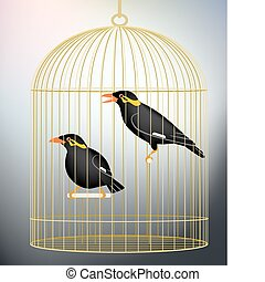Caged myna birds - Editable vector illustration of a pair of...