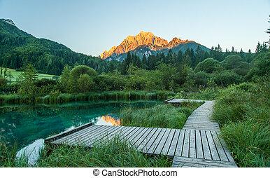 Sava spring, Zelenci, Slovenia - Sava spring in Zelenci near...