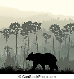 Bear on grassy hillside. - Square illustration of grassy...