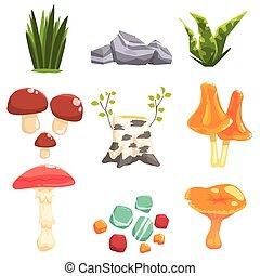 Woods Landscape Natural Elements, Plants And Mushrooms....