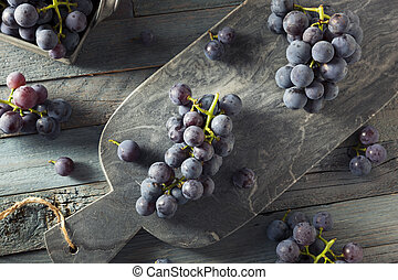 Raw Organic Purple Concord Grapes Ready for Cooking