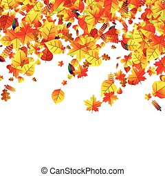 Autumn leaves scattered background. Oak, maple and rowan -...