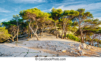 Panorama Of Beautiful Nature Of Calanques On The Azure Coast...