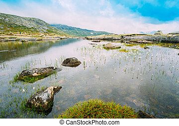 Mountains Lake With Cottongrass, Cotton-grass Or Cottonsedge...