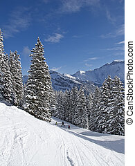 Skiing slope - Slope on the skiing resort Elm Switzerland