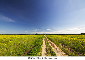 road rape field