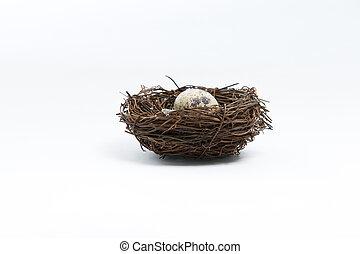 Egg in bird nets