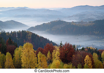 Autumn landscape with morning fog - Autumn landscape with a...