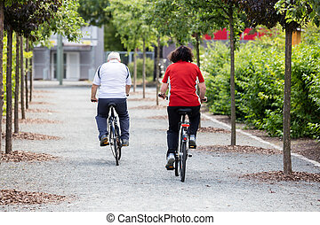 Couple Cycling In Park - Rear View Of Senior Couple Cycling...