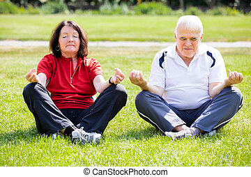 Couple Doing Yoga - Elderly Senior Couple Doing Yoga In...