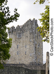 ross castle in killarney county kerry ireland