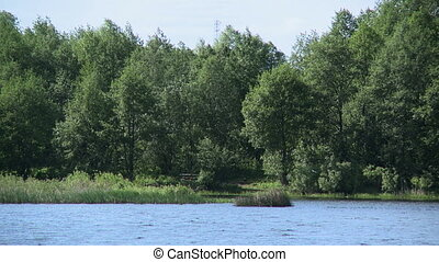 View of trees by lake, close-up - View of trees by lake's...