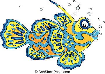 Mandarin fish - Vector illustration of a colorful tropical...