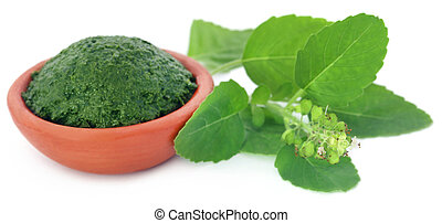 Medicinal holy basil with ground paste - Medicinal holy...