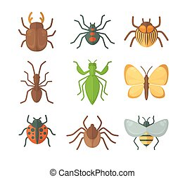 Set of various insects. Vector illustration