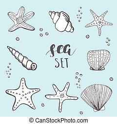 Sea shell background. Hand drawn sea elements shells, stars...