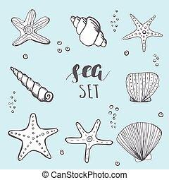 Sea shell background. Hand drawn sea elements shells, stars...