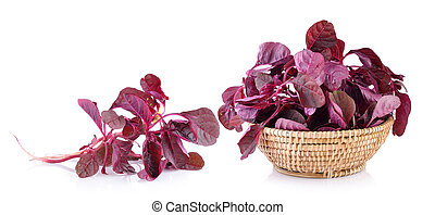 red spinach in the basket on a white background