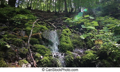 Small waterfall with mountains, forest green and murmuring...